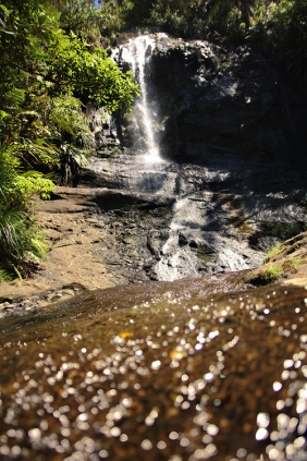 NZ-waitakere-fairy-falls
