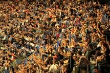 Auckland Breakers Fans Vector Arena
