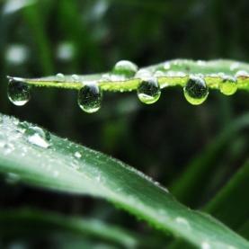 la-reunion-rain
