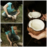 new-caledonia-coconut