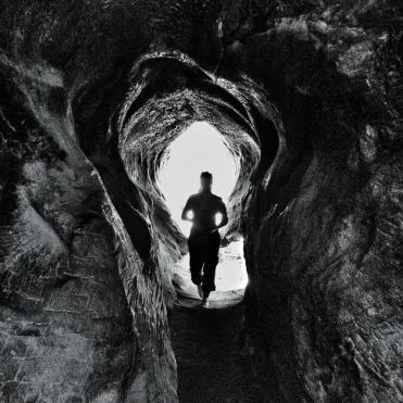 usa-sequoia