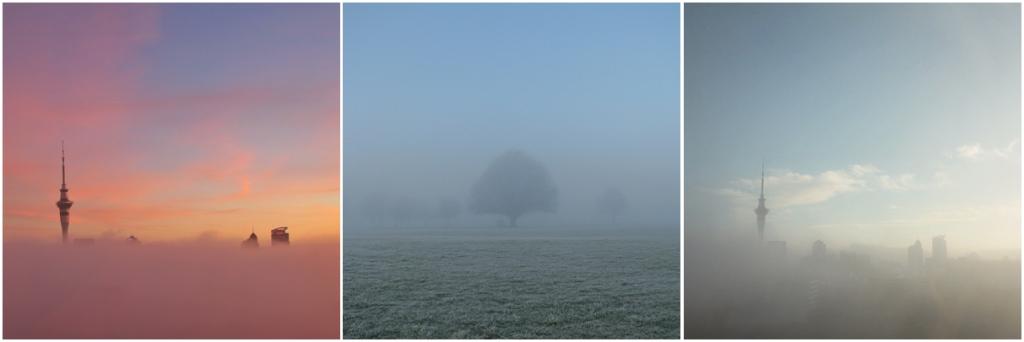 ig-august-fog