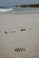 Bales Beach, Kangaroo Island, SA