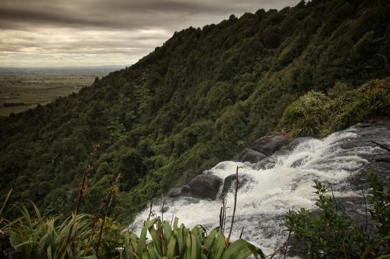 Wairere Falls near Matamata