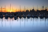 westhaven-marina-auckland