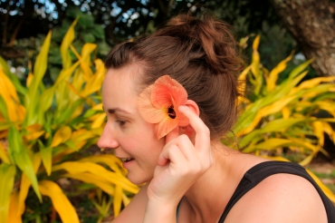 rarotonga-cookislands-hibiscus
