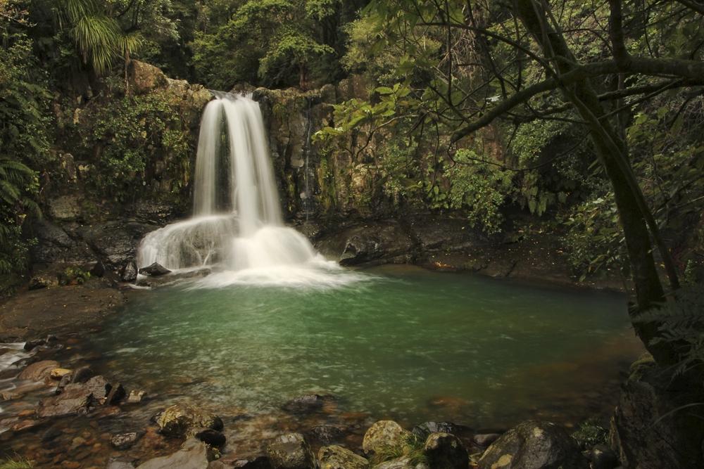 Waiau Falls, Coromandel, New Zealand