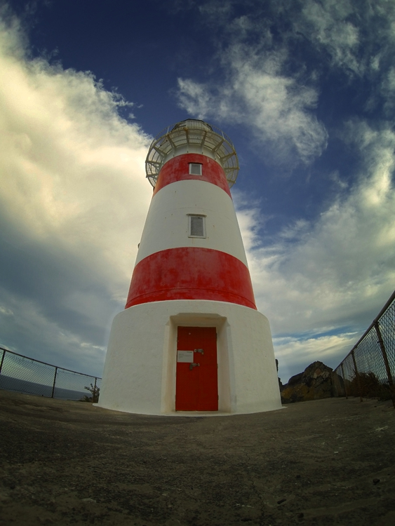 cape palliser new zealand