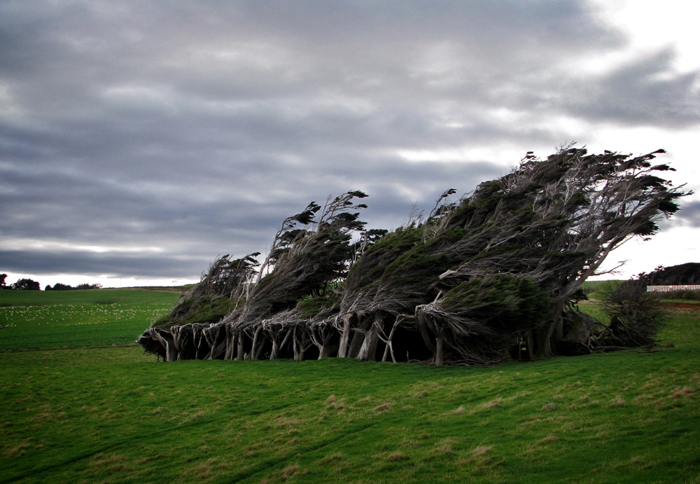 slope point new zealand