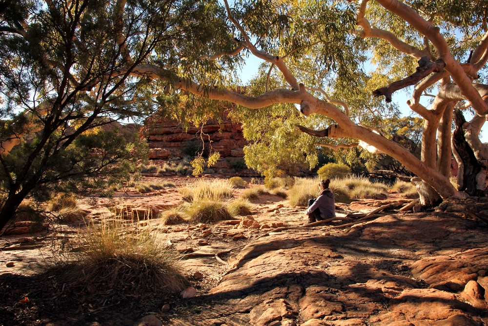 northern territory king canyon
