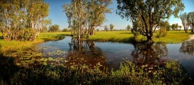 northern territory yellow water river