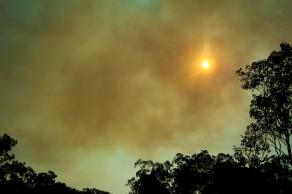 northern territory bushfire