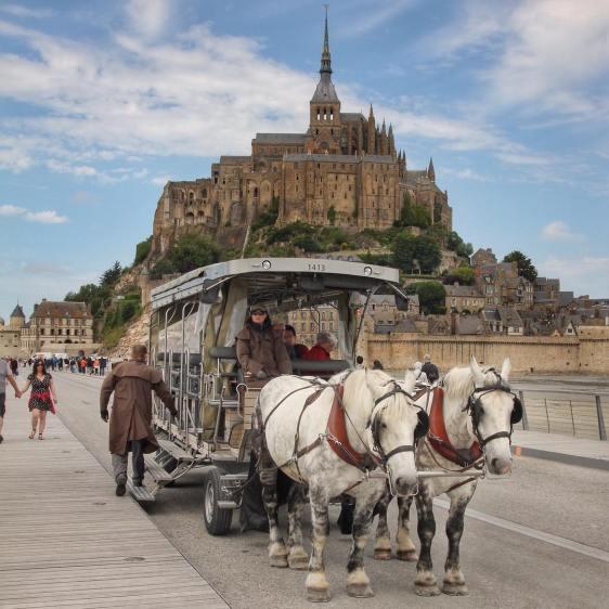 mont saint michel horses