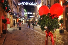 Dijon, France: Rue des Forges