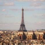 notre-dame-paris-roof-15