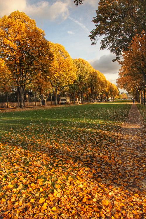autumn-maisons-laffitte-2