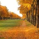 autumn-maisons-laffitte-5