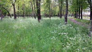spring-maisons-laffitte-4