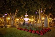 La Laguna Christmas Lights