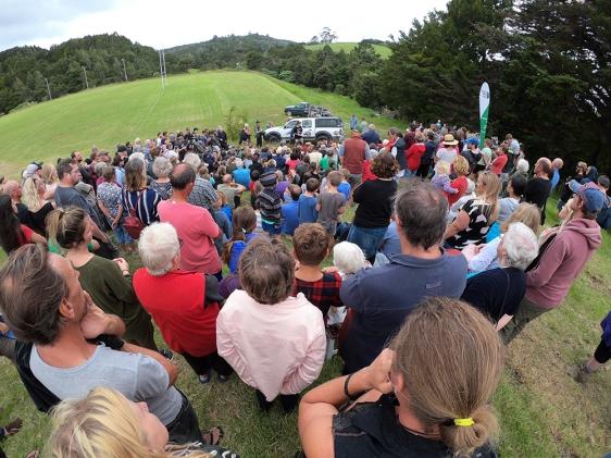 kiwi release parua bay