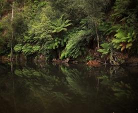 tasmania14