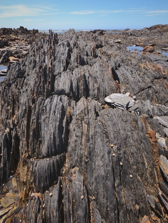 tasmania stoney beach